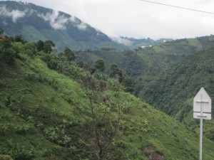 Single Origin Coffee From Colombia
